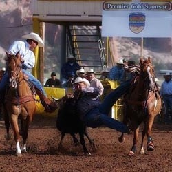 Marshall Allen sale horse success story New Mexico